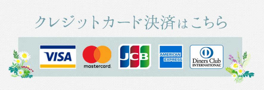 クレジットカード ロゴセット